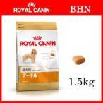 ロイヤルカナン プードル 成犬用(1.5kg)