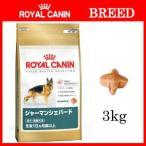 ジャーマンシェパード成犬/高齢犬の消化器系をサポート
