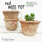 モスポット レッド3鉢 赤色 植木鉢 陶器鉢 テラコッタ鉢 素焼き鉢 鉢底穴アキ プランター おしゃれな植木鉢 mossポット 即日出荷