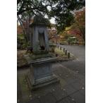 日比谷公園の秋ポストカード