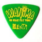 ESP ピック KENTA (WANIMA) PA-WK10-2 / GR アーティストピック