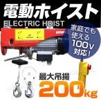 電動ウインチ 家庭用 100V 電動ホイスト 最大200kg (クーポン配布中)