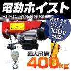 電動ウインチ 家庭用 100V 電動ホイスト 最大400kg (クーポン配布中)