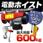 電動ウインチ 家庭用 100V 電動ホイスト 最大600kg (クーポン配布中)