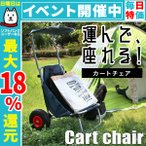 キャリーカート キャリーワゴン カートチェアー 折りたたみ アウトドア 椅子 台車 耐荷重120kg