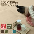 ラグ 厚手 リビング カーペット ラグマット 3.2畳 200x250cm 極厚23mm 低反発ウレタン 厚手 おしゃれ 床暖房対応 洗える 絨毯 抗菌 防ダニ