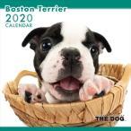 THE DOG カレンダー ボストンテリア 2020年カレンダー 20CL-1108