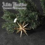 ベツレヘムの星 クリスマス アルビン・プライスラー 木製 オーナメント ゴールド Sサイズ 【EAN: 4250770402917】