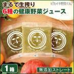 酵素 イキイキ 小笠原クリニック健康ジュース 100cc×30パック 1箱 冷凍ジュース コールドプレス製法