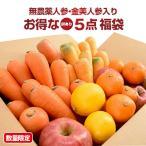 ショッピング初売り (初売り 福袋)にんじんジュース野菜セット福袋 (無農薬金時人参 3kg、無農薬にんじん 3kg、特栽三ケ日みかん 1kg、特栽国産りんご 3個、国産レモン 3個)