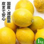 レモン 国産レモン 佐賀県産 1kg 特別栽培農産物 訳あり ジュース用