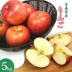 国産 青森県産 りんご 5kg 訳あり 林檎 リンゴ