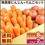 にんじん 人参 送料無料 野菜セット 無農薬にんじん8kg+慣行栽培りんご2kg