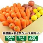 にんじん 人参 送料無料 野菜セット 無農薬にんじん3kg+慣行栽培りんご1kg+慣行栽培レモン500g