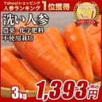 無農薬 にんじん ジュース用 3Kg箱(規格外人参) グルメ