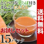 にんじん 人参 ジュース 葉っぱ付きまるごと冷凍にんじんジュース 15pお試しセット 無農薬 無添加 葉っぱ お一人様1回限り