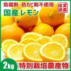 レモン 国産レモン 佐賀県産 2kg 特別栽培農産物 訳あり ジュース用