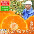(数量限定)静岡県産 太田ポンカン 3kg(三ケ日)(特別栽培)(訳あり)(ぽんかん)(椪柑)