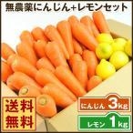 にんじん 人参 送料無料 野菜セット 無農薬にんじん3kg+慣行栽培レモン1kg