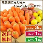 にんじん 人参 送料無料 野菜セット 無農薬にんじん3kg+慣行栽培りんご1kg+慣行栽培レモン1kg