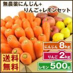 にんじん 人参 送料無料 野菜セット 無農薬にんじん8kg+慣行栽培りんご2kg+慣行栽培レモン500g