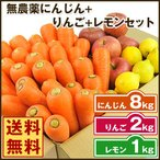 にんじん 人参 送料無料 野菜セット 無農薬にんじん8kg+慣行栽培りんご2kg+慣行栽培レモン1kg
