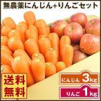 にんじん 人参 送料無料 野菜セット 無農薬にんじん3kg+慣行栽培りんご1kg