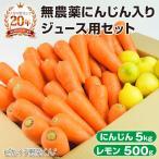 にんじん 人参 送料無料 野菜セット 無農薬にんじん5kg+慣行栽培レモン500g