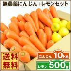 にんじん 人参 送料無料 野菜セット 無農薬にんじん10kg+慣行栽培レモン500g