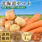 北海道野菜5kgセット 無農薬にんじん2kg+じゃがいも2kg+玉ねぎ1kg 送料無料 人参 にんじん 訳あり グルメ