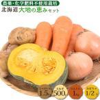 野菜セット 大地の恵みセット 約3kg 送料無料 有機JAS 無農薬 じゃがいも 玉ねぎ かぼちゃ 南瓜 人参 にんじん 訳あり
