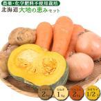 野菜セット 大地の恵みセット 約5kg 送料無料 有機JAS 無農薬 じゃがいも 玉ねぎ かぼちゃ 南瓜 人参 にんじん 訳あり