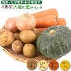 野菜セット 大地の恵みセット 約10kg 送料無料 有機JAS 無農薬 じゃがいも 玉ねぎ かぼちゃ 南瓜 人参 にんじん 訳あり