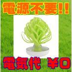 加湿器 ミスティベビーツリー ミスティツリー グリーン GN U702-02 加湿器 オフィス用 寝室用 エコ 自然気化式 電池不要 eco エコロジー加湿器 mikuni ミクニ