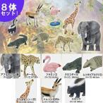 新ハイグレード リアル 動物 フィギュア 8体セット Vol.3 アニマル リアル ゾウ キリン