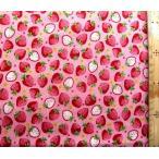 プリント 生地 イチゴ がいっぱい ( ピンク )kok-loa-49010-1-b-nk-2061