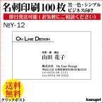 名刺 作成 印刷 100枚 送料無料 ビジネス名刺  格安 早い 安い 校正あり モノクロ Y-12
