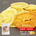 ドライフルーツ 砂糖不使用 無添加 しろシトラスChips 黄金柑 神奈川県 みかん 静岡県 10g 国産 こだわり 仕事の合間に teaに合う ギフト 日本のおいしいフルー