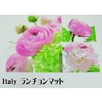 sale セール イタリア製 ランチョンマット esprit nature 薔薇雑貨