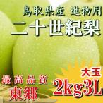 二十世紀梨 20世紀梨 鳥取県 東郷 赤秀 2kg 3L(6玉) 大玉 贈答用 進物用 果物 お取り寄せ