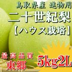 7月31日受付締切り! 二十世紀梨 鳥取県 ハウス二十世紀梨 東郷 5kg 2L(16玉)ハウス栽培