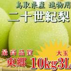 二十世紀梨 20世紀梨 鳥取県 東郷 赤秀 10kg 3L(24~28玉) 大玉 贈答用 進物用 果物 お取り寄せ