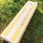 お歳暮 送料無料 鳥取県産 ねばりっこ 進物用 3kg 産地直送  お取り寄せ 長芋 とろろ芋