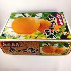 鳥取県産 あたご梨 愛宕梨 5kg (5玉) 化粧箱入り 送料無料 産地直送 ギフト 手土産