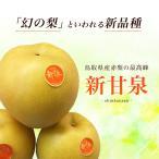 新甘泉 しんかんせん 鳥取県 東郷 秀品 5kg 3L(14玉) 贈答用 進物用 果物 二十世紀梨 筑水 ブレンド 新品種