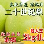 二十世紀梨 20世紀梨 鳥取県 東郷 赤秀 2kg 4L(5玉) 超大玉 贈答用 進物用 果物 お取り寄せ