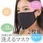 マスク 黒マスク 洗えるマスク 布マスク 花粉症 黒色2枚組セット 活性炭入り 風邪予防 PM2.5