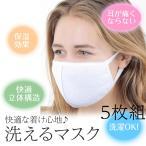 マスク 布マスク 洗えるマスク 立体マスク 花粉症 白 ホワイト 5枚組セット 活性炭入り 風邪予防 PM2.5