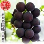 わけあり 山梨県産 巨峰 ご家庭用 訳あり きょほう ぶどう ブドウ 2kg 葡萄 産地直送