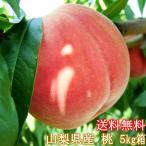 桃の生産量日本一山梨県産・訳あり桃・わけあり・不揃い・お買い得・大サービス5Kg箱・もも